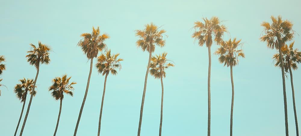 Il Top delle Guide per un Weekend a Los Angeles